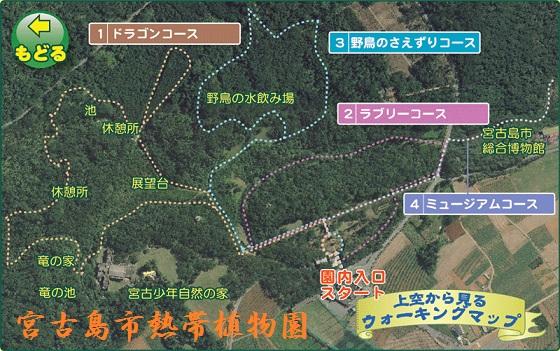 1-熱帯植物園.jpg