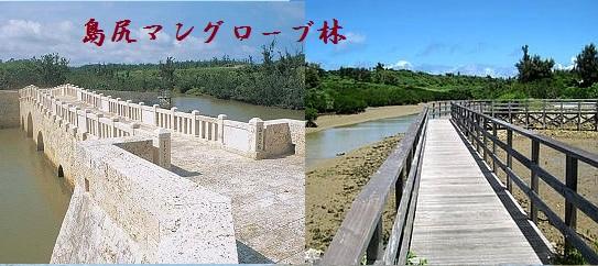島尻マングローブ林.jpg